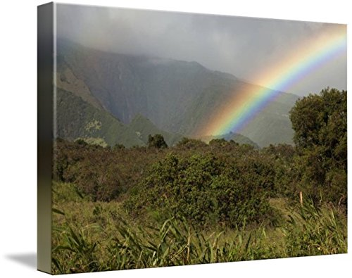 Wall Art Print entitled Hawaii, Maui, A Rainbow Over The Lush Kaupo Gap by Design Pics | 48 x - Gap Kaupo
