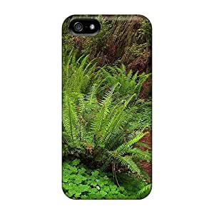 New Design Shatterproof Cqn13623Kcbd Cases For Case Ipod Touch 5 Cover (forest Trail)