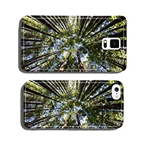 Giant Redwood Forest Canopy cell phone cover case iPhone6