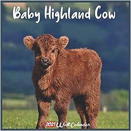 Cow Calendar 2021 Baby Highland Cow 2021 Wall Calendar: Official Baby Highland Cow