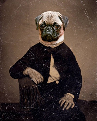 Victorian PUG LADY portrait woman altered anthro art print