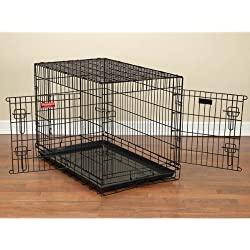 "ProSelect Everlasting Dual-Door Crates for Dogs, Foldable, Durable and Extra-Strong, Versatile and Portable, Constructed of Epoxy-Finished Steel - Medium/Large, Black 36""L x 23""W x 26""H"