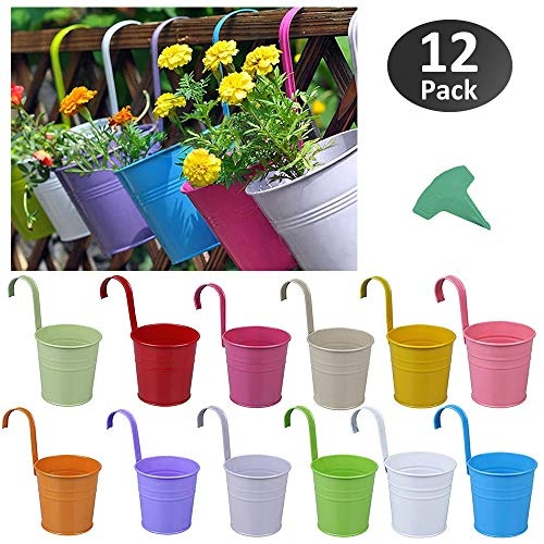GROWNEER 12 Packs 4 Inches Colorful Metal Iron Hanging Flower Pot with 15 Pcs Plant Labels and Detachable Hooks, for Windows Wall Fence Balcony Garden