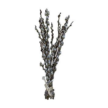 10 Salweidezweige Ca 40cm Echte Deko Zweige Fur Bodenvase