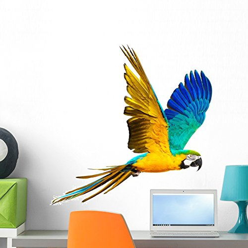 Wallmonkeys Colourful Flying Parrot Wall Decal Peel and Stick Animal Graphics (24 in W x 22 in H) WM158371 (Coloured Tropical Bird With A Large Beak)