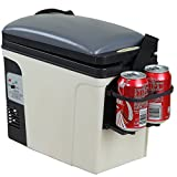 Generic Compact Car Truck Fridge Refrigerator Mini Portable Travel Camping Cooler and Warmer,6L,12V 110V