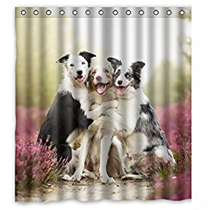 Afagahahs Dogs Border Collie Love Printed cm Polyester Shower Curtain 66 x 72 in 1