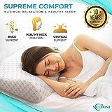 Milemont Memory Foam Pillow, Cervical