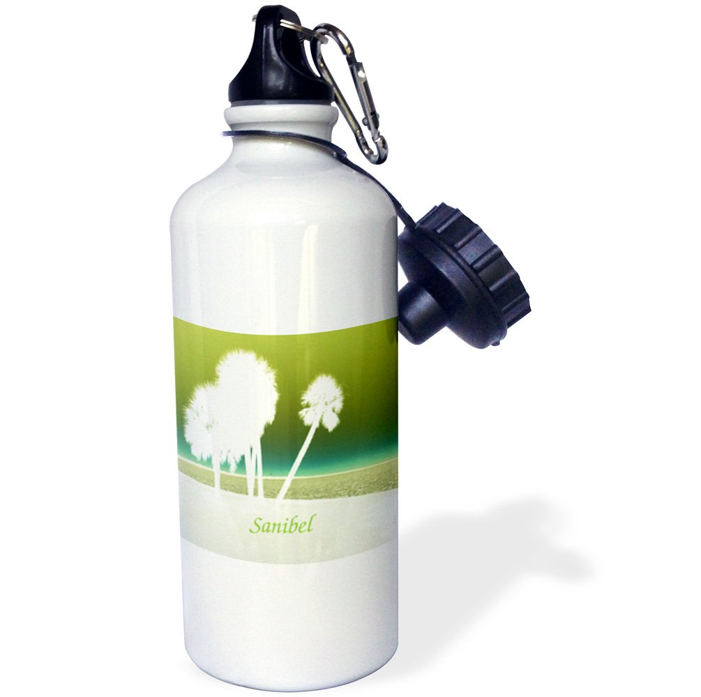21 oz Sports Water Bottle Image of Abstract White Palms Against Sanibel Lime Sky 3dRose Florene Beach and Sunset Art wb/_237447/_1
