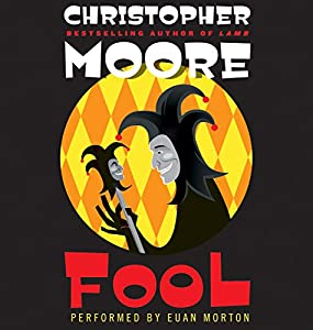 Fool Audiobook