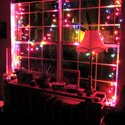 Amazon.com: Holiday Essence - Set of 140 Indoor Multi-Color ...