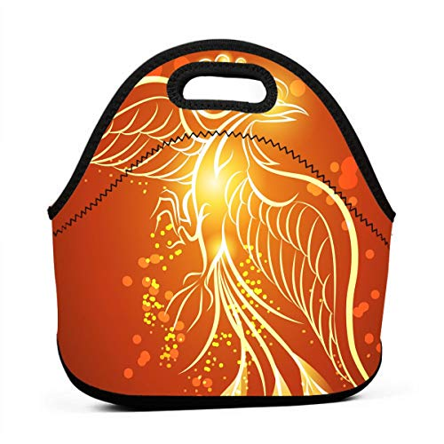 Janeither Abstract Rising Phoenix Art Portable Reusable Lunch Bag Waterproof Picnic Tote Insulated Cooler Zipper - Baby Nba Dvd