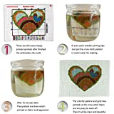 Cross Stitch Stamped Kits Pre-Printed