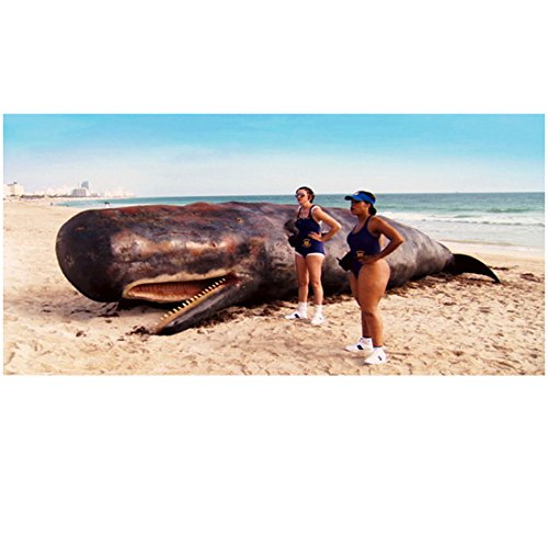 Reno 911 Kerri Kenney as Trudy and Niecy Nash as Raineesha Standing Next to Beached Whale 8 x 10 inch -