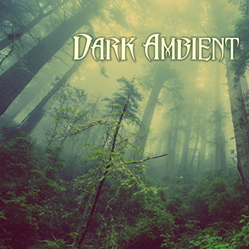 Dark Ambient Music - Nature Sounds, Creepy Soundscapes with Rain Background Sound -