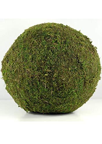 Richland Moss Balls Preserved Moss 10
