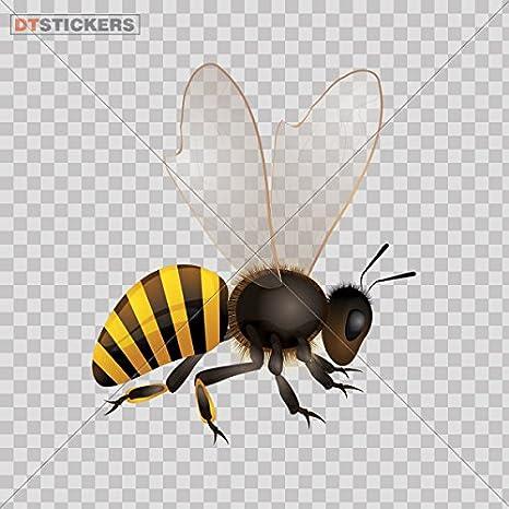 Amazon.com: Sticker Bee Logo Doors durable Boat (5 X 4,24 In ...