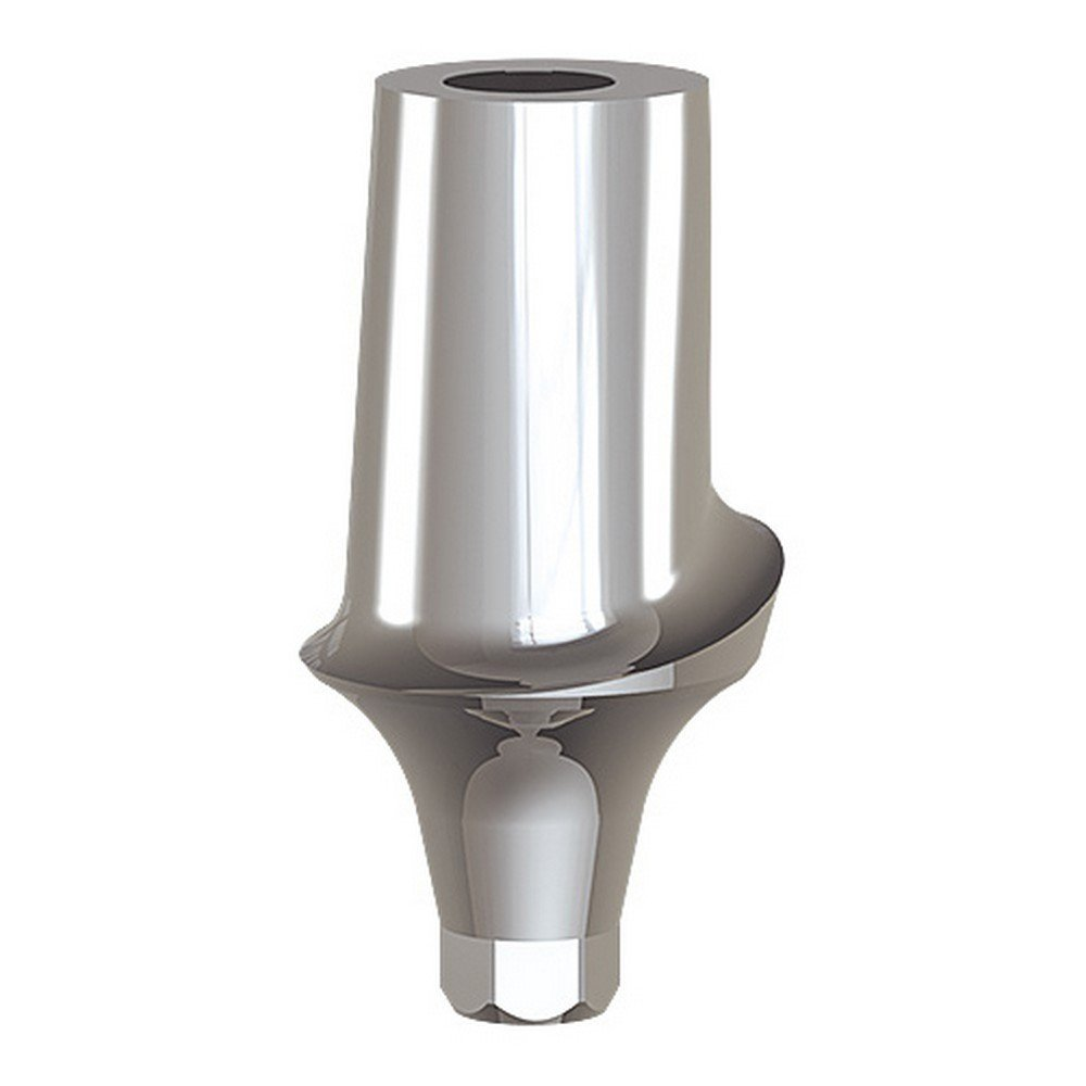 Paltop 40-72062 Conical 2 mm Straight Anatomic Abutment Ti, Concave, 6 mm Diameter