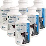 6PACK Duralactin Canine 1000 mg (1080 tablets)