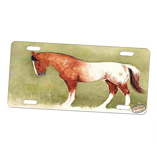 Blanket Appaloosa Horse - Art by Denise Every Aluminum Vanity License Plate Car Tag Sign - Sorrel Blanket Appaloosa Horse