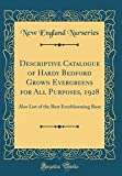 Amazon / Forgotten Books: Descriptive Catalogue of Hardy Bedford Grown Evergreens for All Purposes, 1928 Also List of the Best Everblooming Rose Classic Reprint (New England Nurseries)