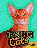 Abyssinian Cats, Joanne Mattern, 1429668652