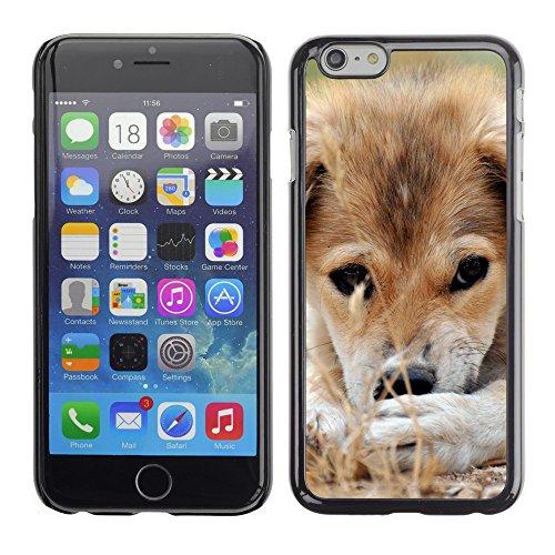 "Premio Sottile Slim Cassa Custodia Case Cover Shell // V00003786 chiot triste bâtarde // Apple iPhone 6 6S 6G PLUS 5.5"""