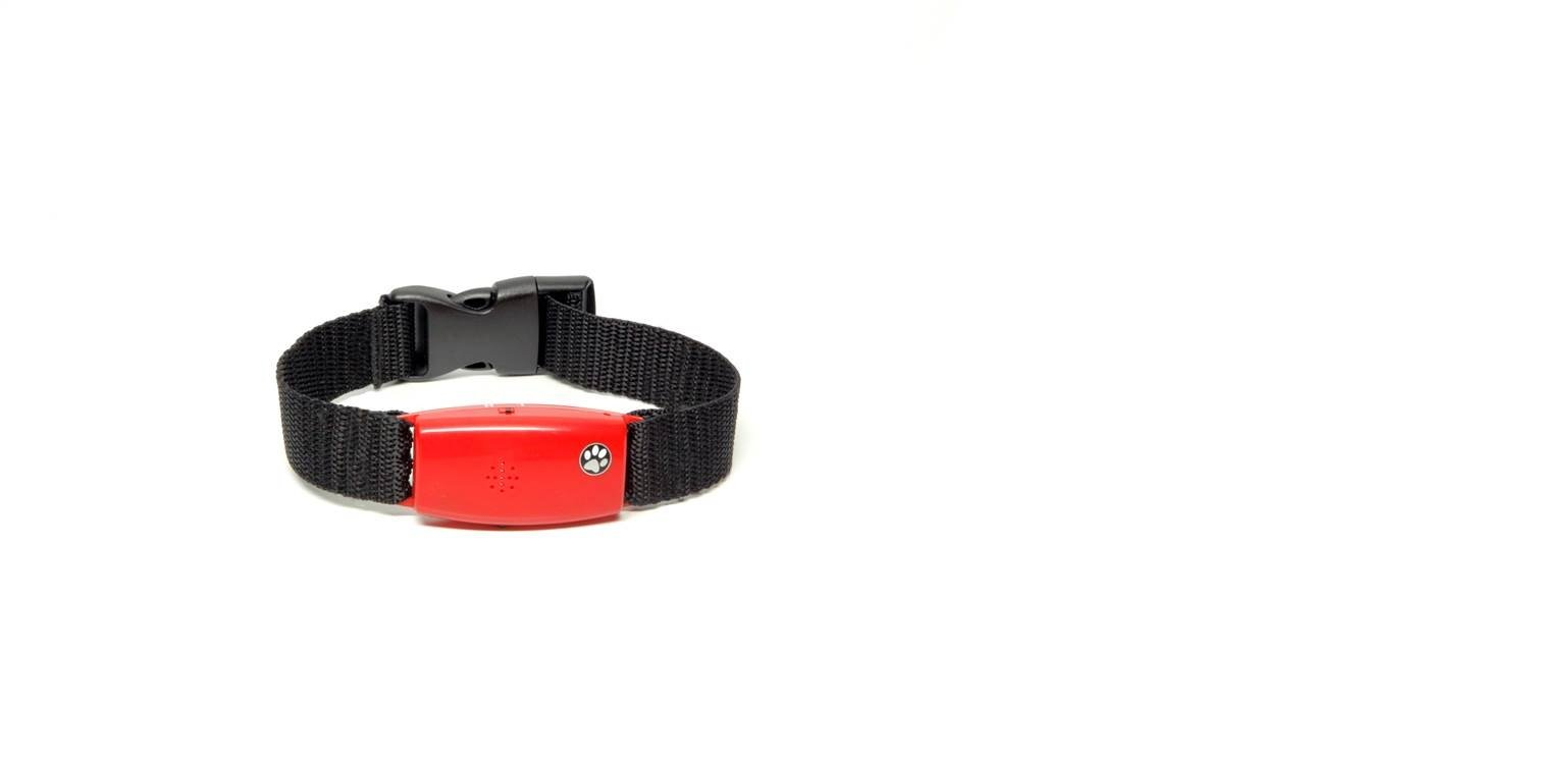 Pet Tag Classic No Bark Collar, Red, Small. by PetTag (Image #1)