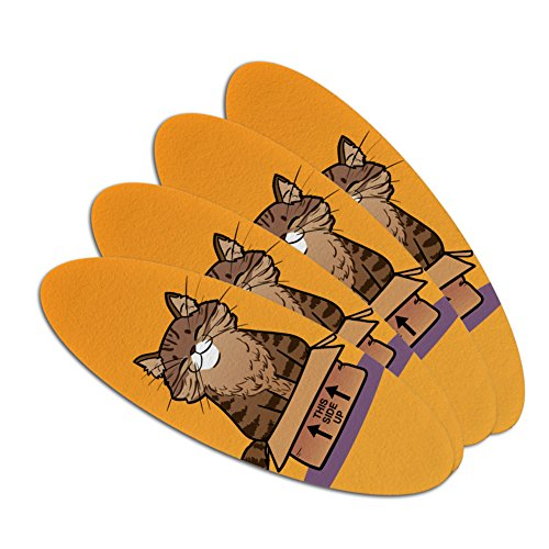 Cat Sitting in Box Double-Sided Oval Nail File Emery Board S