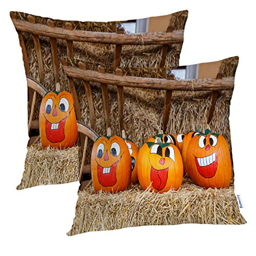 Batmerry Halloween Pillow Covers 18x18 Inch Set of 2, Painted Pumpkin Double Sided Square Pillow Cases Pillowcase Sofa Cushion