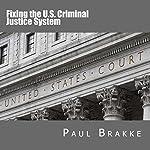 Fixing the US Criminal Justice System   Paul Brakke