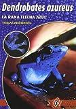 Dendrobates azureus : la rana flecha azul