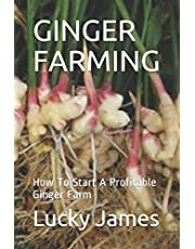 GINGER FARMING: How To Start A Profitable Ginger Farm