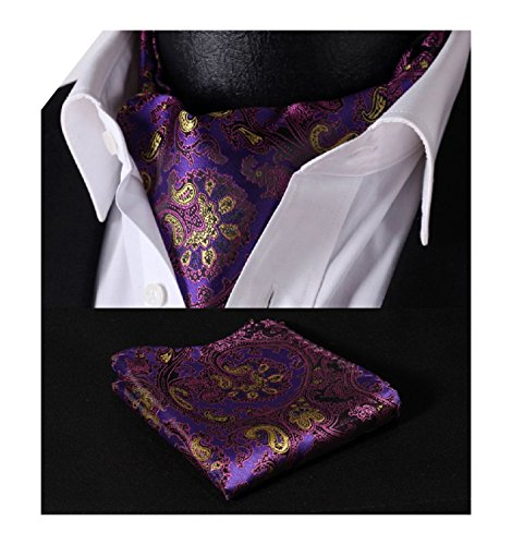 HISDERN Men's Ascot Paisley Floral Jacquard Woven Gift Cravat Tie and Pocket Square Set (Silk Ascot)