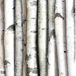 Wilson Enterprises Decorative Birch Poles 7 Ft. (4 Poles 1 1/2-2 1/2 Inch Diameter)
