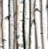 "Wilson Enterprises Decorative Birch Poles 4ft (4 Poles 1 1/2""-2 1/2"" dia.)"
