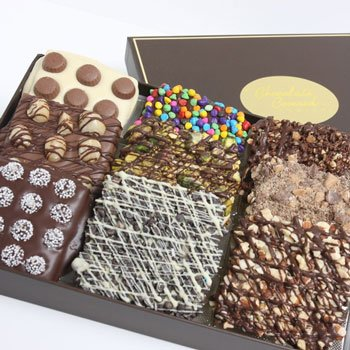 ultimate-belgian-chocolate-covered-graham-crackers-9-piece
