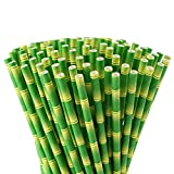 ALINK Bamboo Paper Straws, Biodegradable Disposable Party Drinking Straws for Juices, Shakes