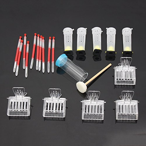 Beekeeping Tools Kits Moving Grafting Shift Needle Bee Clips Hive Queen Larva Rearing Feeding Equipment Apiculture Supplier Katoot