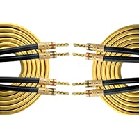 HannLinte Speaker Wire - Speaker Cable(6.0FTx2) with Gold Plated Sawtooth Banana Plugs-12AWG (OFC), Pair (2 Cables), Gold color, (6.0FT)