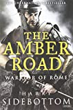 img - for The Amber Road: Warrior of Rome: Book 6 book / textbook / text book