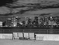 JP London UMB91040 Prepasted New York City Skyline Full Wall Mural, 10.5-Feet Wide by 8-Feet High