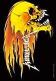 Metallica - Skull&Flames - Posterflagge 100% Polyester - Grösse 75x110 cm
