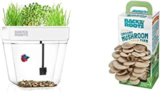 product image for Back to the Roots Water Garden Betta Fish Tank + Organic Mushroom Growing Kit