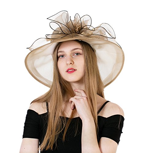 Dantiya Women's Fascinators Kentucky Derby Church Dress Wedding Floral Cocktail Party Hat (Occasion Hats For Women)