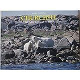 Churchill: Polar Bear Capital of the World