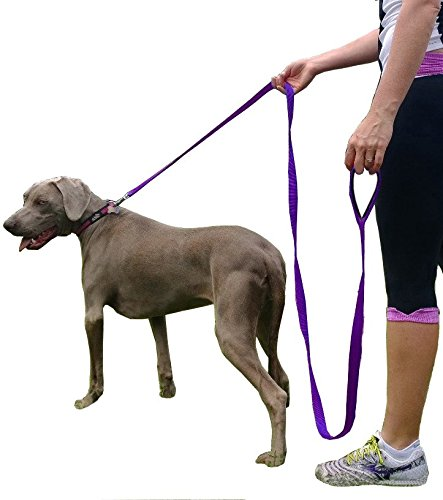 Leashes Large Supplies Products Puppies product image