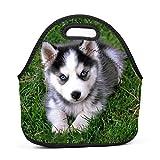 SeLub Baby Husky Dog Lunch Bag Portable Bento Pouch Lunchbox Baby Bag Multi-purpose Satchel Handbag for Student Worker Travel Mummy