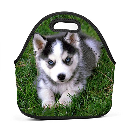 SeLub Baby Husky Dog Lunch Bag Portable Bento Pouch Lunchbox Baby Bag Multi-purpose Satchel Handbag for Student Worker Travel Mummy by SeLub