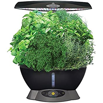 Amazon com : AeroGarden Herbie Kid's Garden with Pizza Party